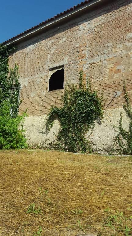 Rustico in Vendita a Fauglia: 5 locali, 180 mq