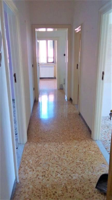 Appartamento in buone condizioni in affitto Rif. 7912216