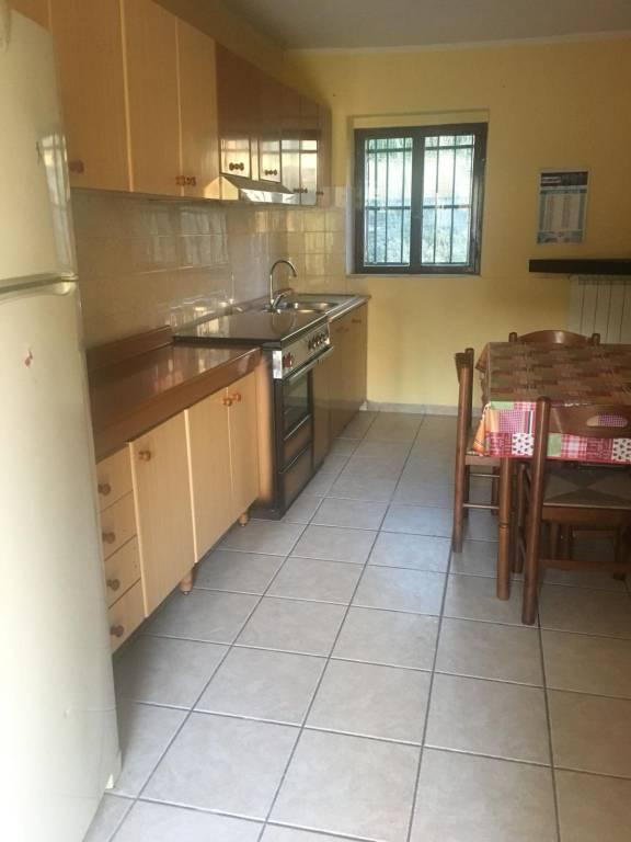 Appartamento in buone condizioni arredato in affitto Rif. 7930080