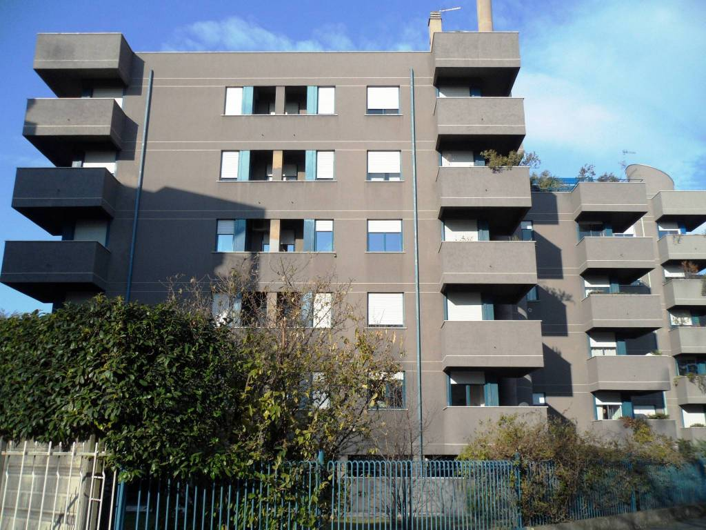 Appartamento in buone condizioni arredato in affitto Rif. 7935761