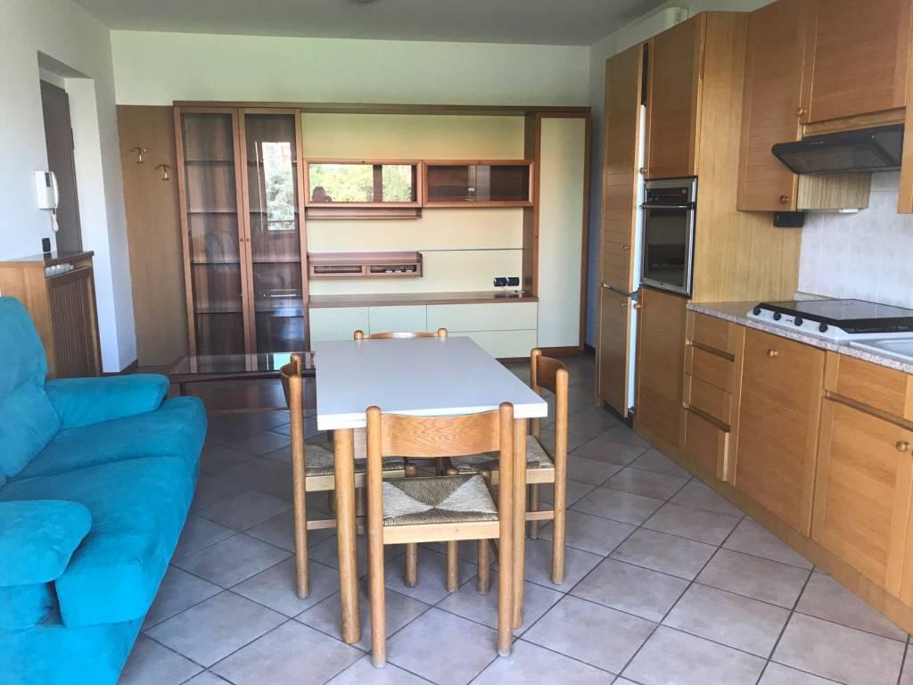 Appartamento in ottime condizioni arredato in affitto Rif. 7929142