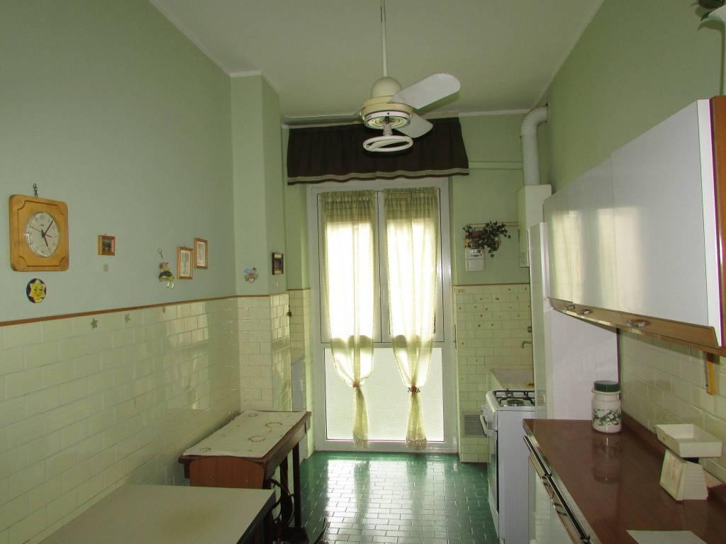 Appartamento in ottime condizioni parzialmente arredato in affitto Rif. 7925696