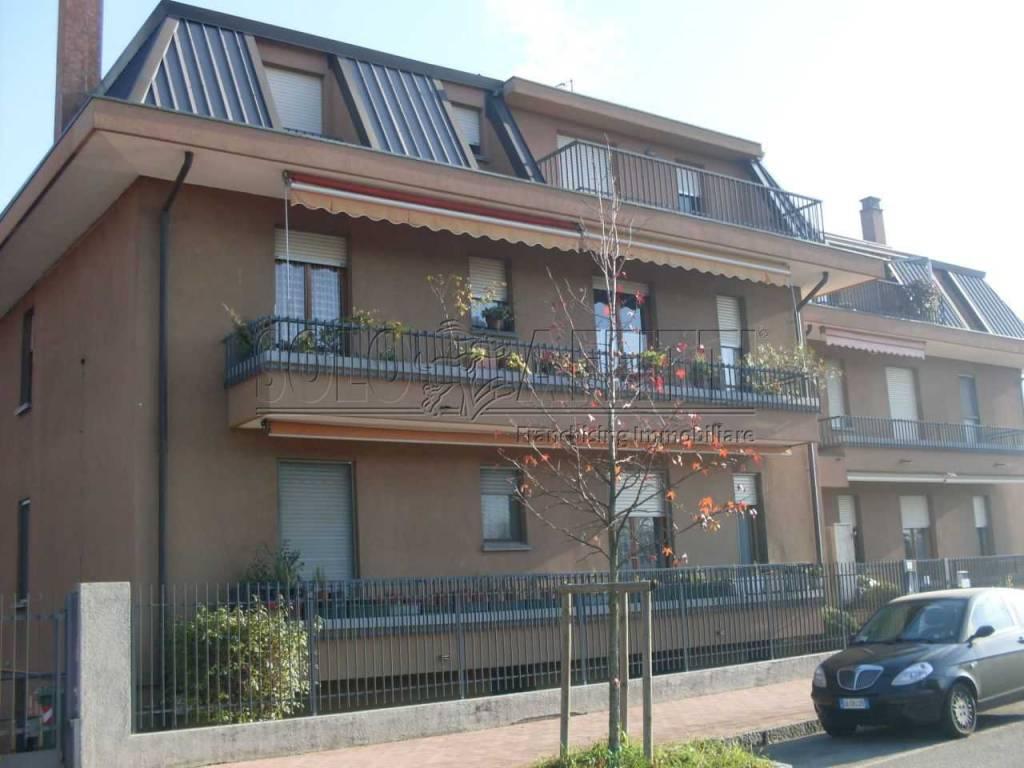 Appartamento in ottime condizioni in affitto Rif. 8533049