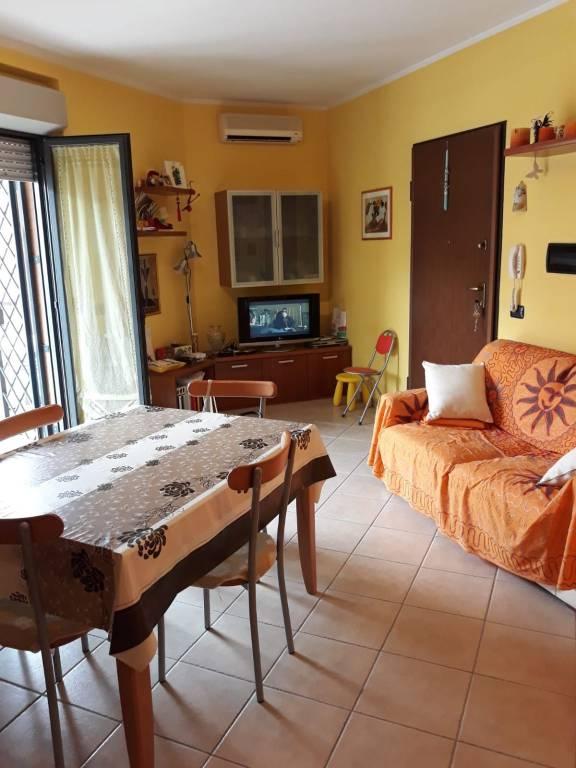 Appartamento in ottime condizioni arredato in affitto Rif. 7965829