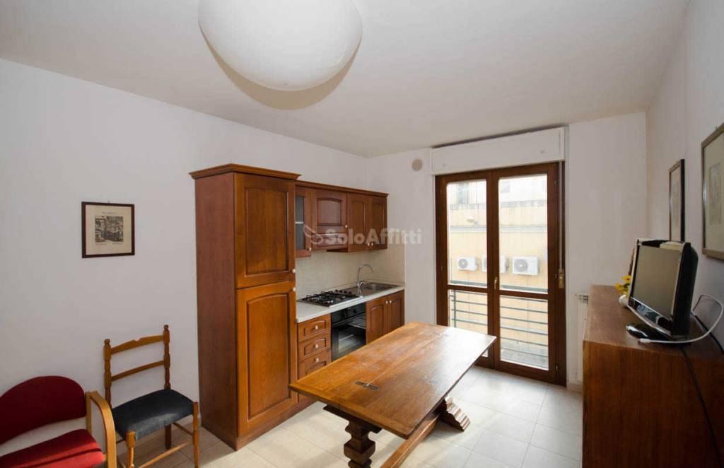 Appartamento in ottime condizioni arredato in affitto Rif. 8492088