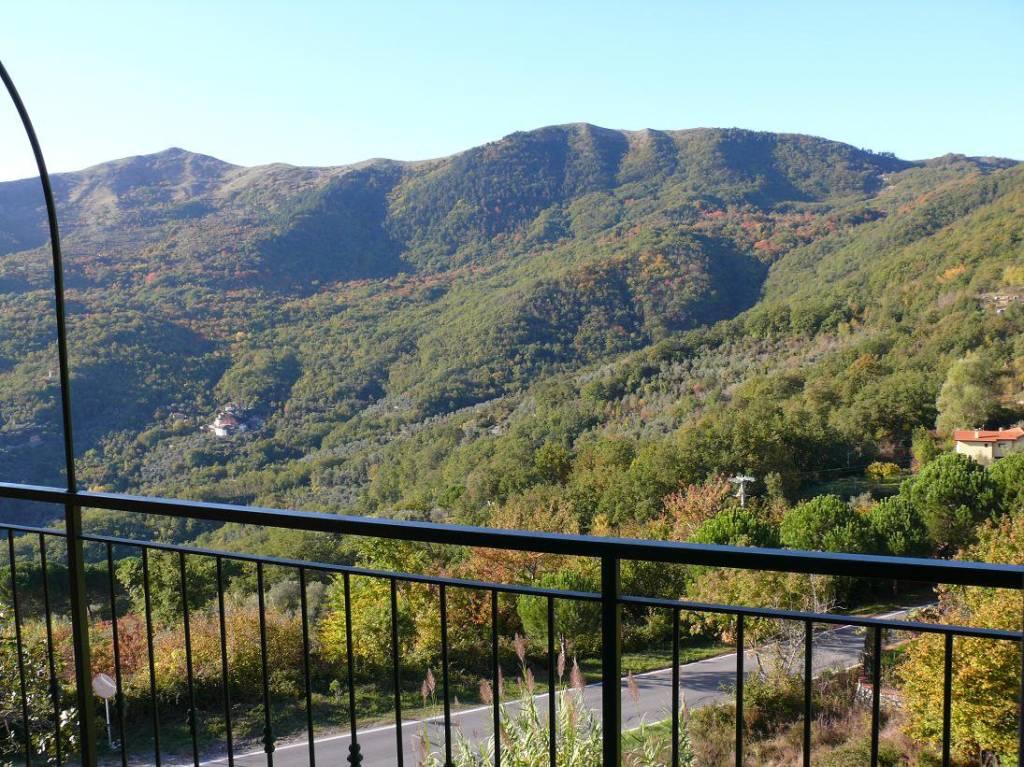 Villa in vendita a Testico, 4 locali, prezzo € 155.000 | PortaleAgenzieImmobiliari.it