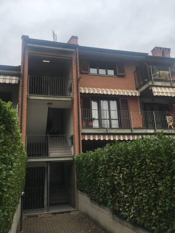 Appartamento in ottime condizioni in affitto Rif. 8004879