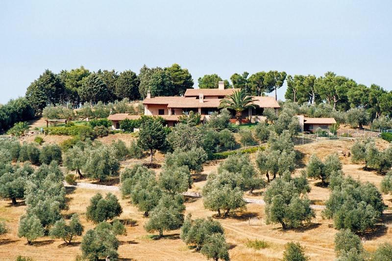 Villa piscina oliveto vicina al mare