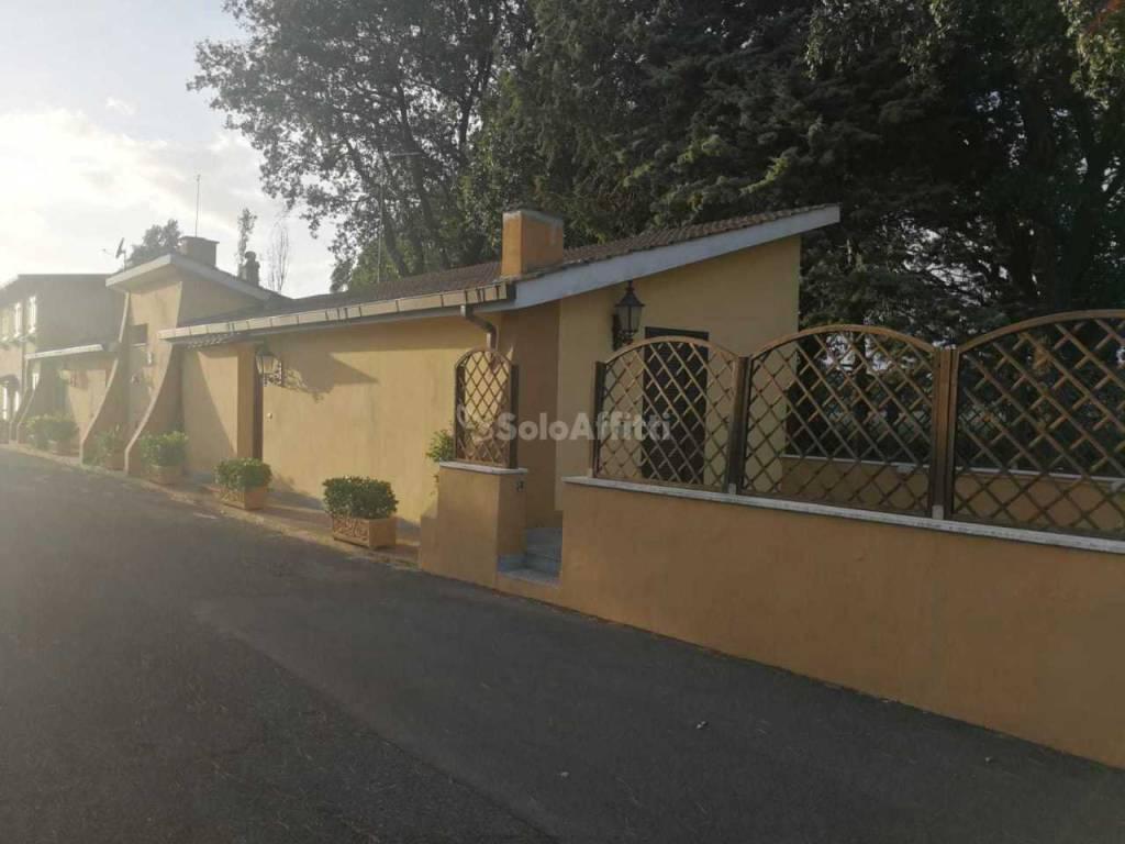 Appartamento in ottime condizioni arredato in affitto Rif. 8297178