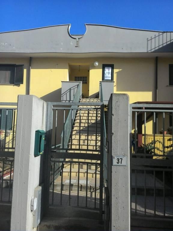Appartamento in ottime condizioni arredato in affitto Rif. 8142790