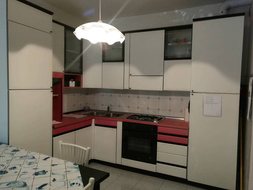Appartamento in buone condizioni arredato in affitto Rif. 8138842