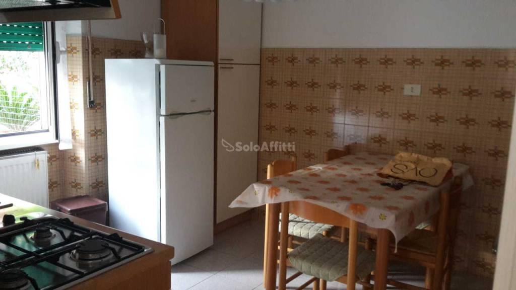 Appartamento in buone condizioni arredato in affitto Rif. 8138937