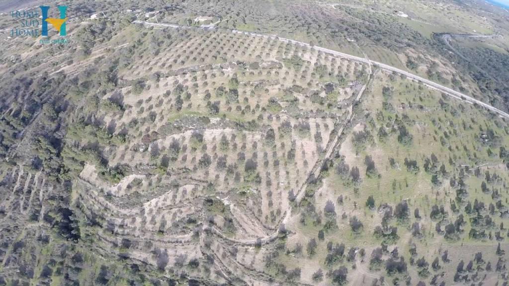 A Noto Terreno Agricolo  in Vendita