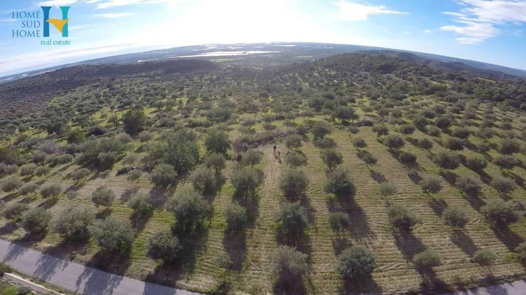 Vendesi Terreno Agricolo a Noto