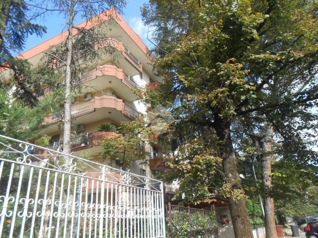 Appartamento in buone condizioni in vendita Rif. 9290518