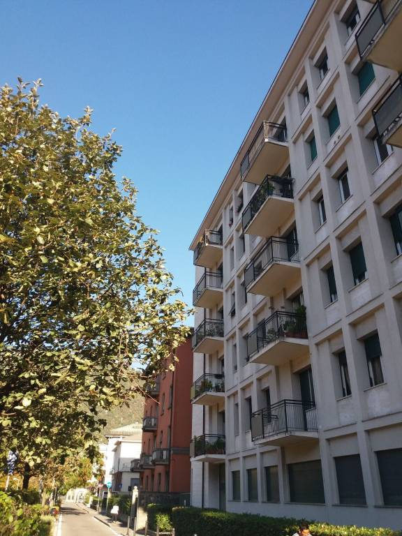 Appartamento in ottime condizioni arredato in affitto Rif. 8158538