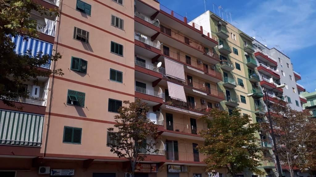 Stanza / posto letto in affitto Rif. 8170319