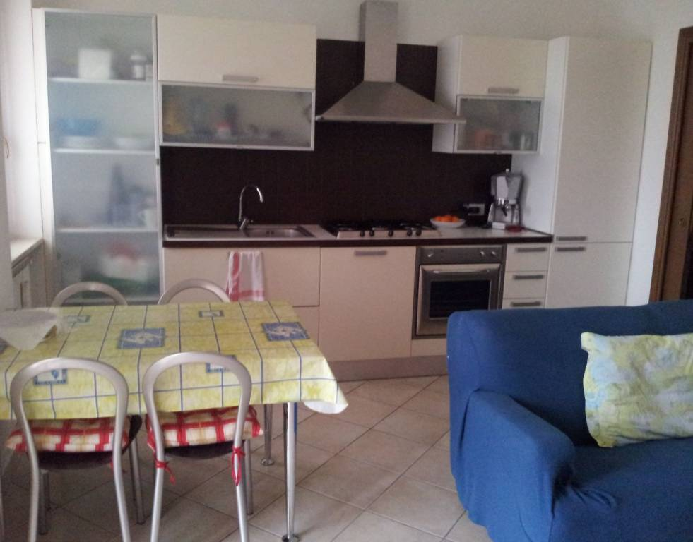 Appartamento in ottime condizioni arredato in affitto Rif. 8172197