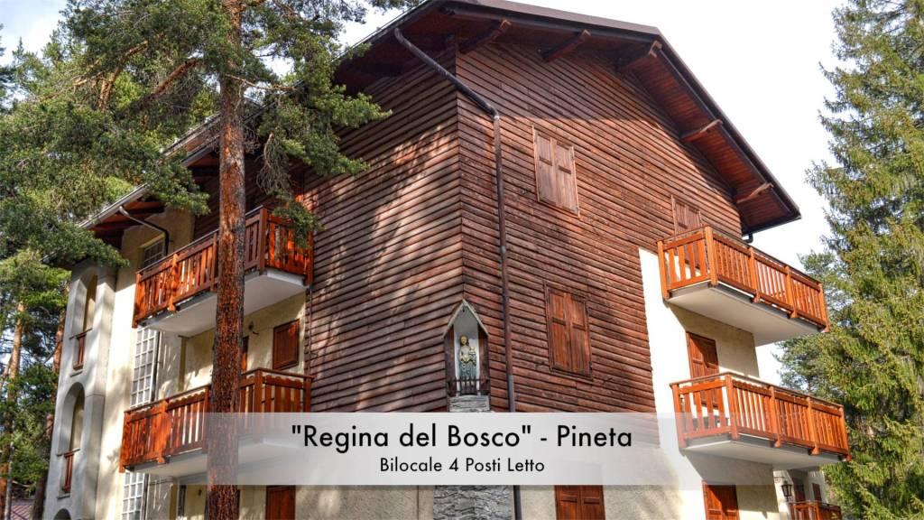 """""""Regina del Bosco"""" Pineta - Bilocale Ristrutturato"""