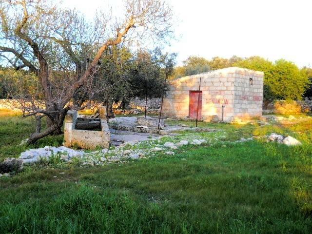 Terreno Agricolo in vendita a Castrignano del Capo, 9999 locali, prezzo € 38.000 | CambioCasa.it