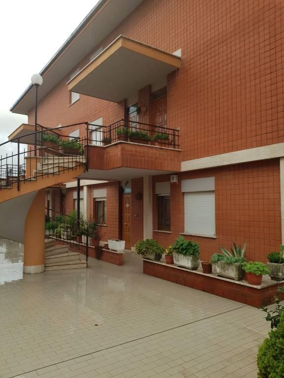 Appartamento in buone condizioni arredato in affitto Rif. 8200054