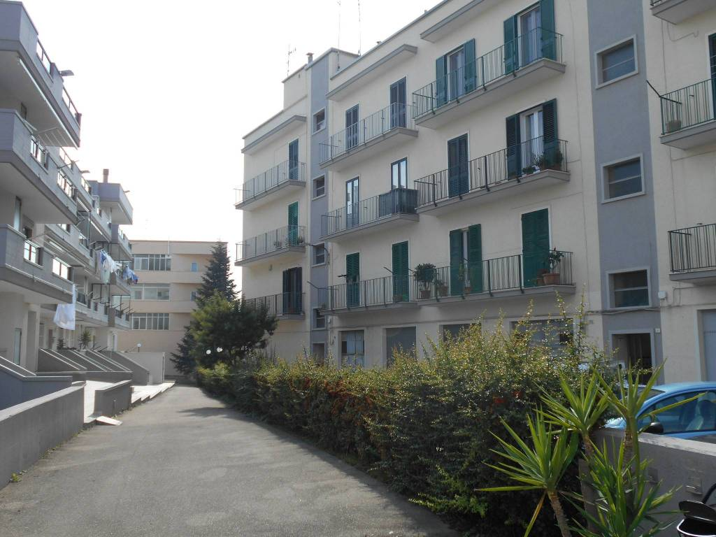 Appartamento in buone condizioni in vendita Rif. 8200086