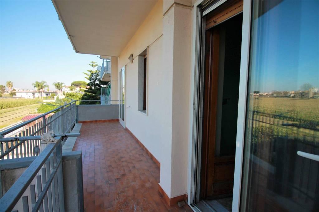 Appartamento in buone condizioni in affitto Rif. 8230379