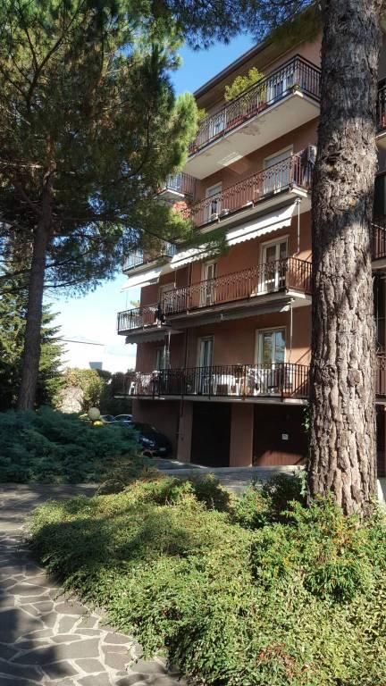 Appartamento in ottime condizioni in vendita Rif. 8240809