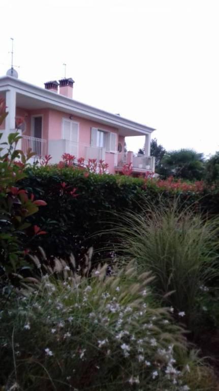 Appartamento in ottime condizioni arredato in affitto Rif. 8900444