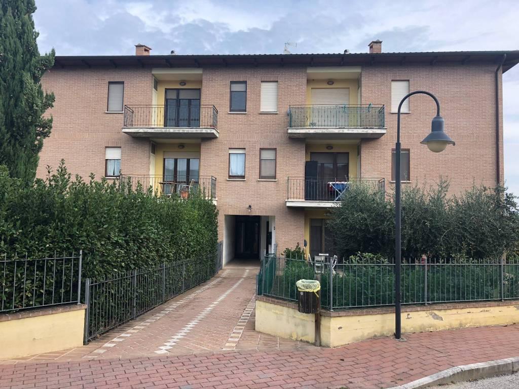 Appartamento trilocale in affitto a Bettona (PG)