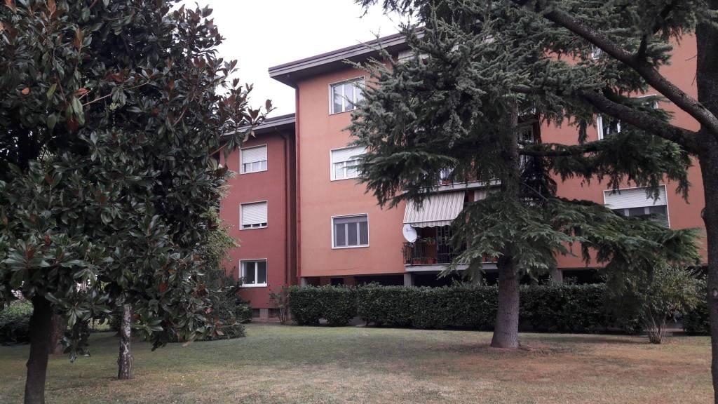 Appartamento in buone condizioni in affitto Rif. 8212419