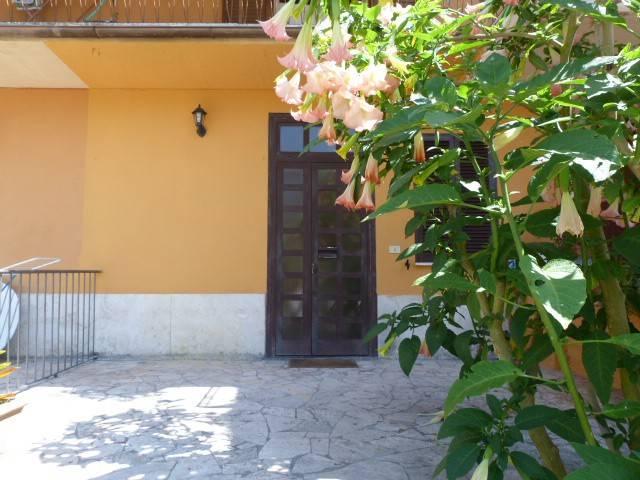 Appartamento in ottime condizioni parzialmente arredato in affitto Rif. 8282959