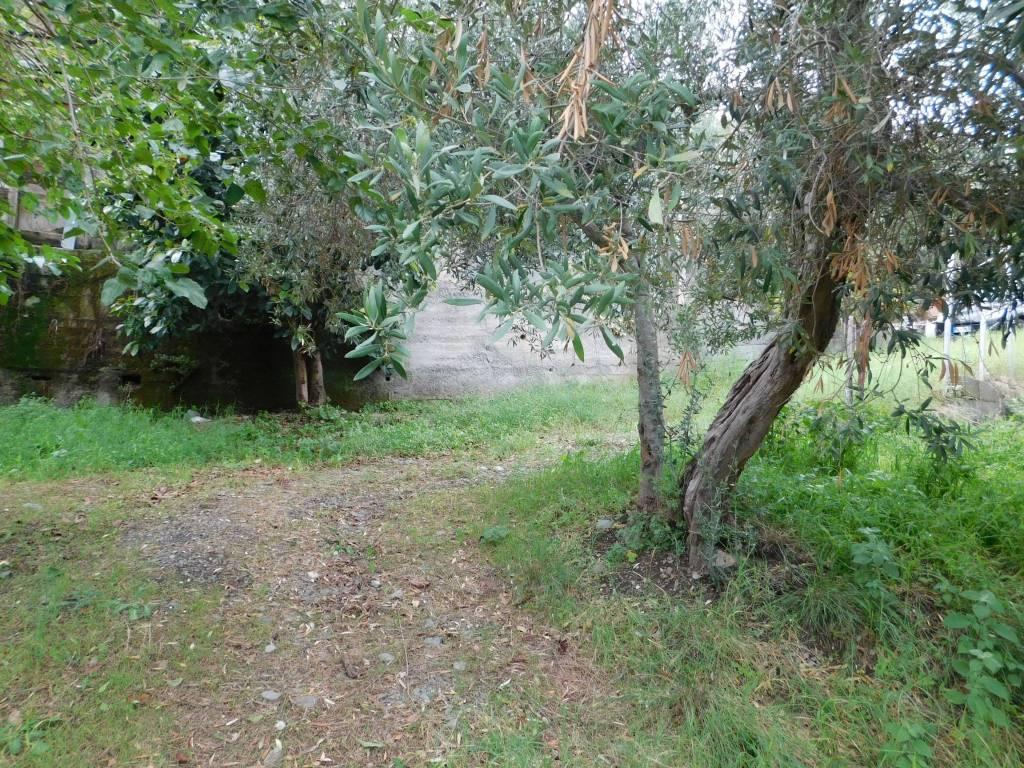 Terreno Agricolo in vendita a Savoca, 9999 locali, prezzo € 17.000 | CambioCasa.it