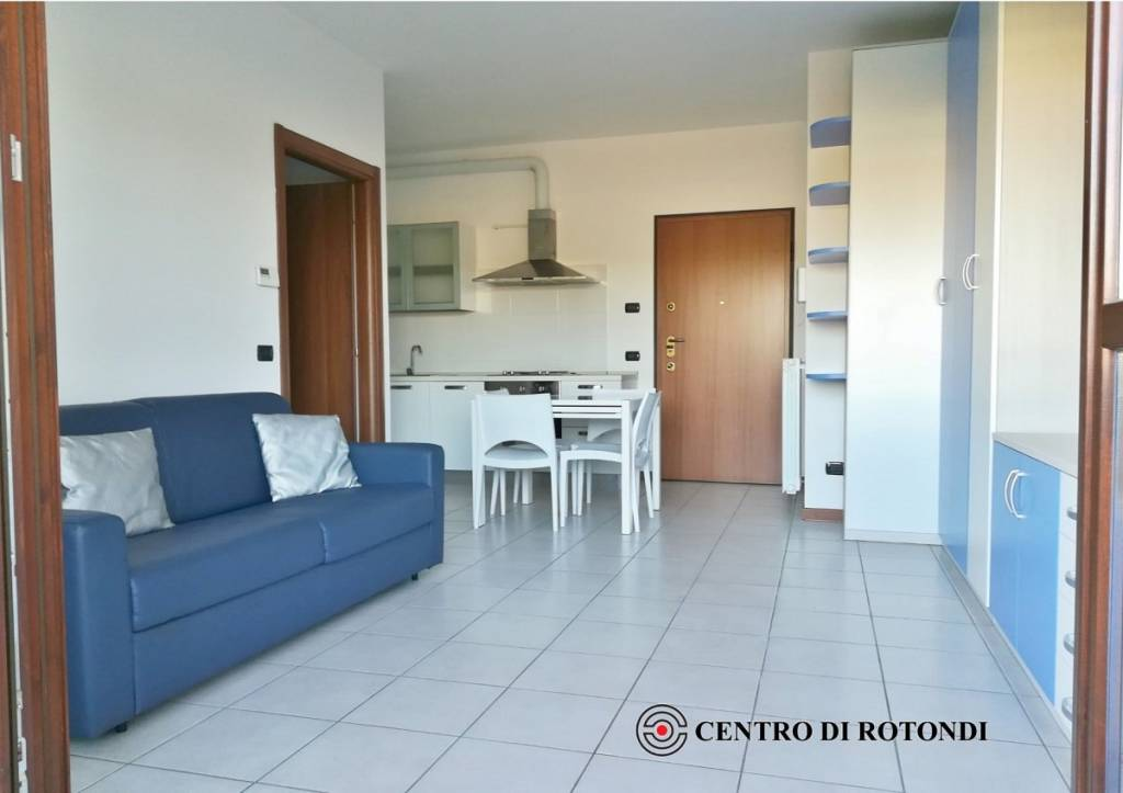 Appartamento in ottime condizioni arredato in affitto Rif. 8296931