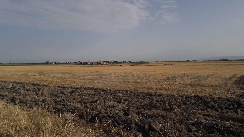Terreno in agro Segezia Rif. 8341657