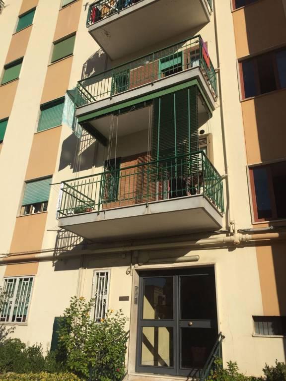Appartamento in buone condizioni in affitto Rif. 8356547