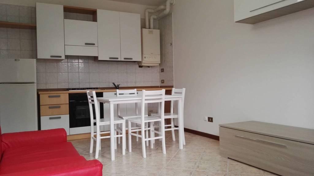 Appartamento in buone condizioni arredato in affitto Rif. 8369512