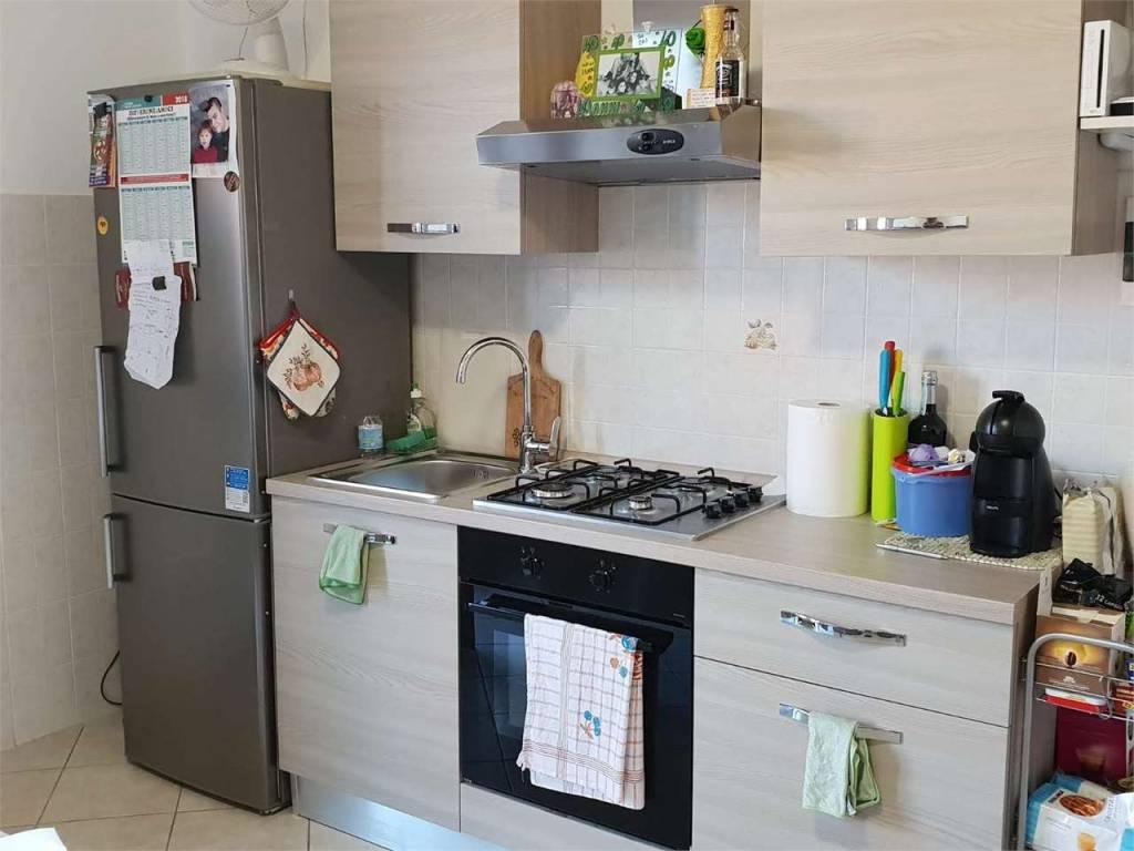Appartamento in ottime condizioni in affitto Rif. 8411135