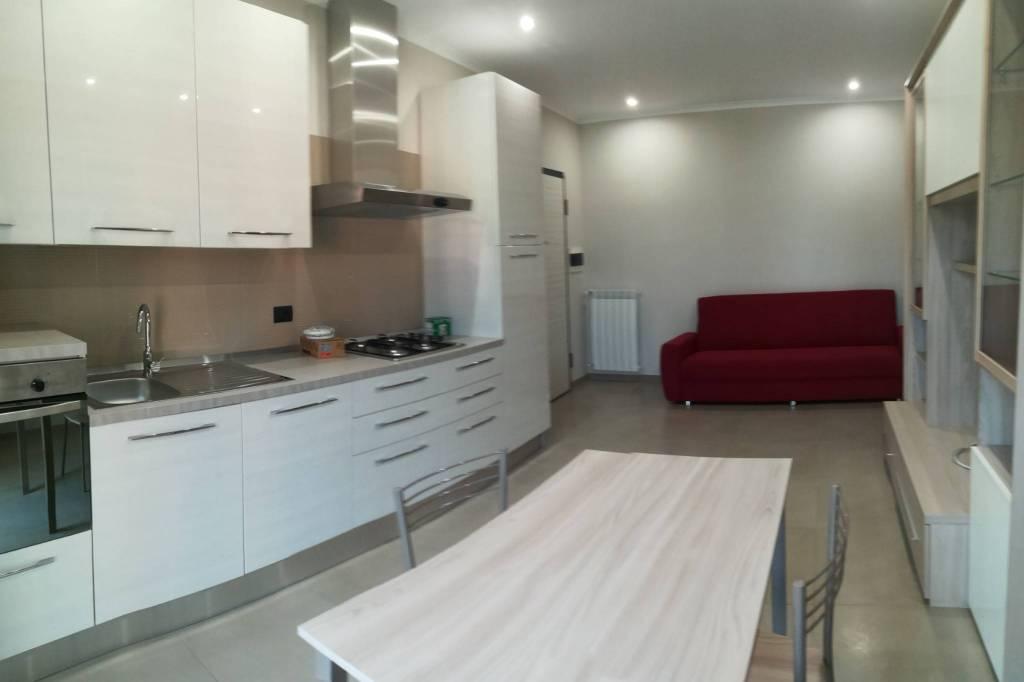 Appartamento in ottime condizioni arredato in affitto Rif. 8414294