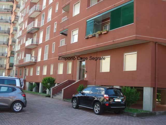 Appartamento in buone condizioni arredato in affitto Rif. 8410016