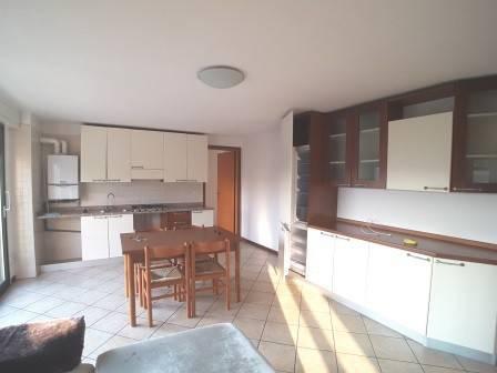 Appartamento in buone condizioni arredato in affitto Rif. 8466838