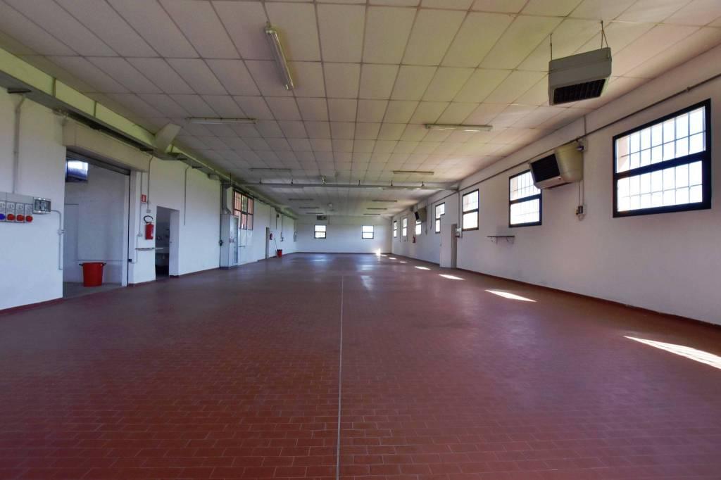 Capannone in Affitto a Savignano Sul Rubicone Periferia: 5 locali, 600 mq