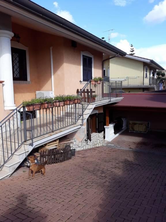 Appartamento in ottime condizioni arredato in affitto Rif. 8503537
