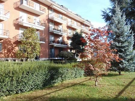 Appartamento in buone condizioni in affitto Rif. 8503642