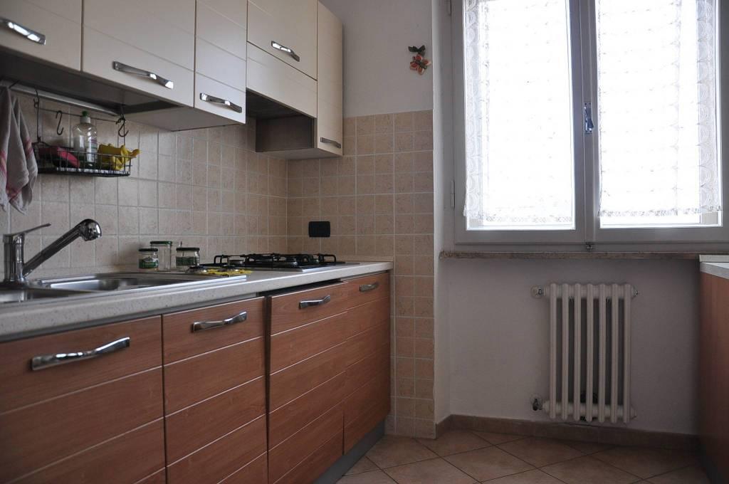 Appartamento in buone condizioni arredato in affitto Rif. 8506882