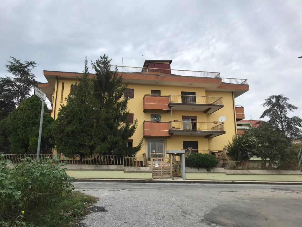 Appartamento in buone condizioni in affitto Rif. 8523353
