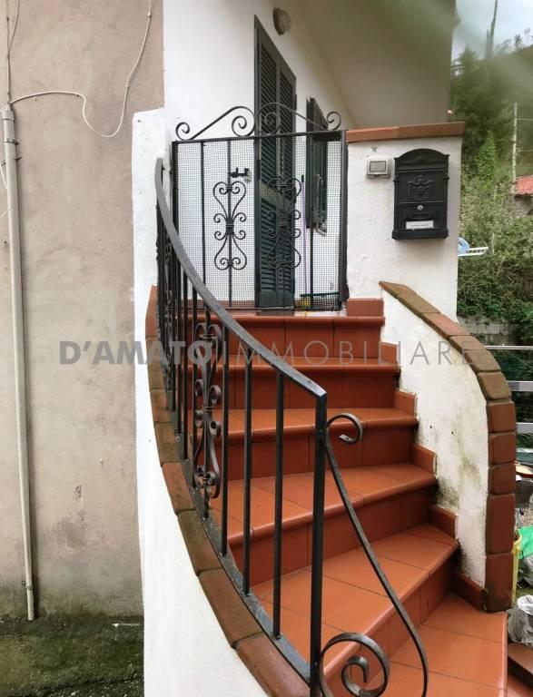 Appartamento in buone condizioni arredato in affitto Rif. 8524840