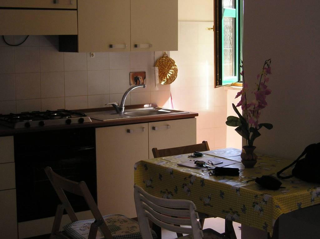 Appartamento in ottime condizioni arredato in affitto Rif. 8895008
