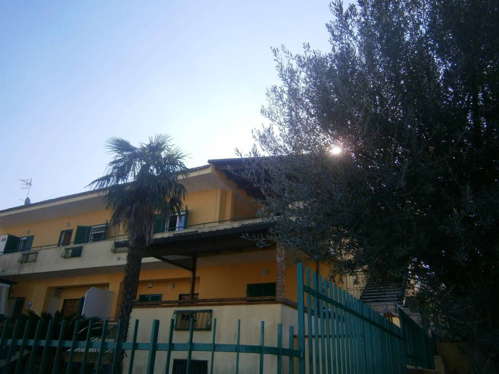 Appartamento in ottime condizioni arredato in affitto Rif. 8549784