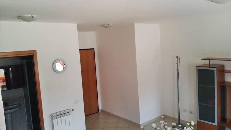 Appartamento in buone condizioni arredato in affitto Rif. 8561956